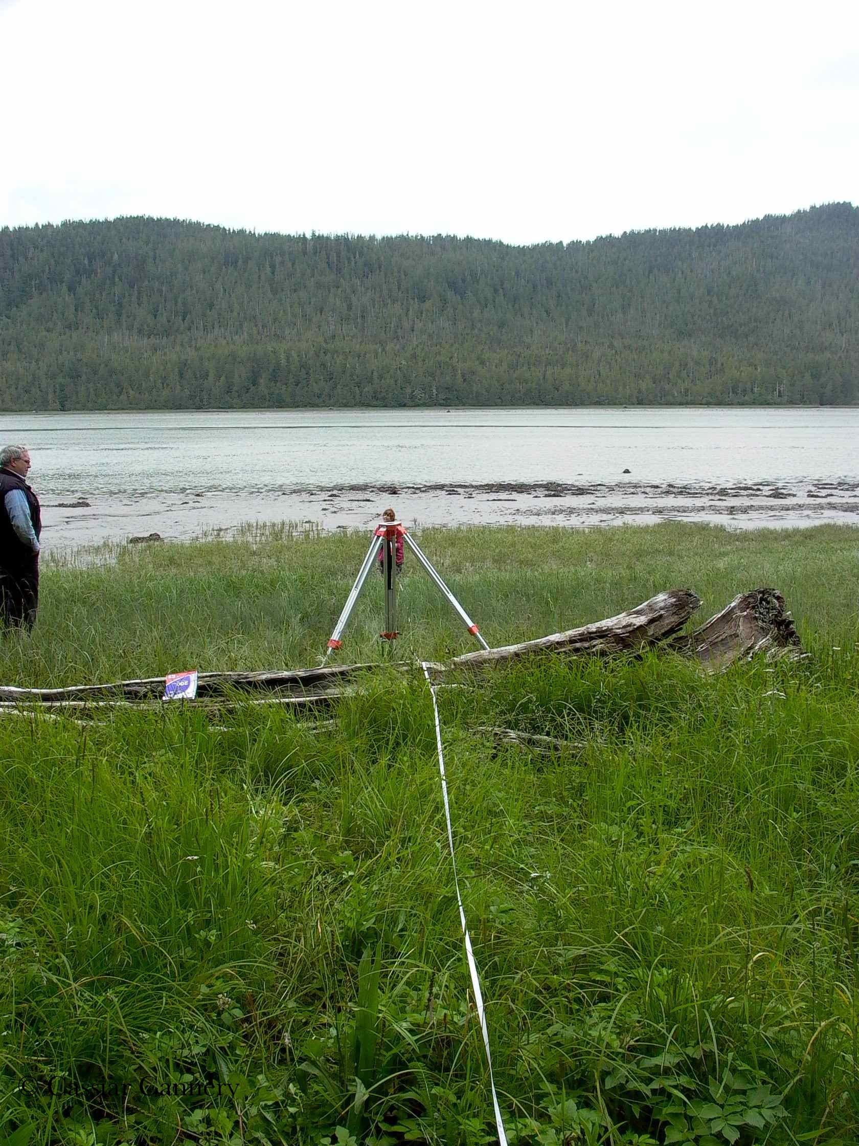Cassiar Cannery - UNBC Botany Research - changes in elevation measured from the treeline to the edge of the mud flat