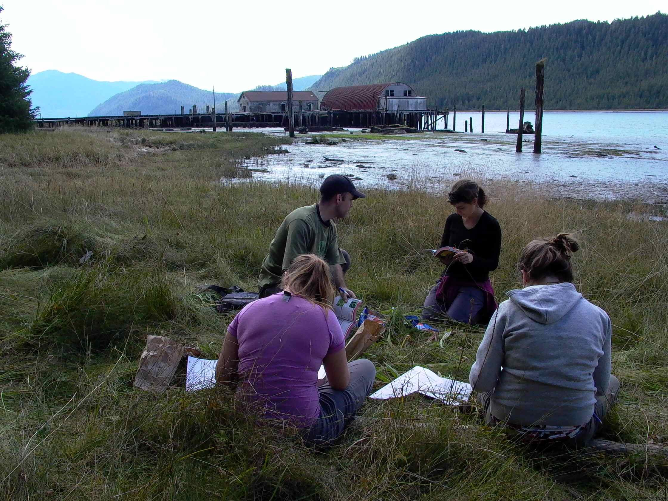 Cassiar Cannery - 2013 UNBC Field Research - checking samples against their master list