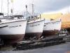 Cassiar Cannery - Doug Lait - Cassiar gillnetters