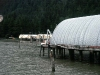Cassiar Cannery - Doug Lait - 1975 - Boatshop to Houses