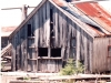 Cassiar Cannery - Gary Backlund - Cassiar Cannery 1994