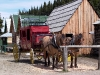 Cassiar Cannery - Barkerville stagecoach ride