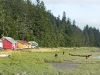 Cassiar Cannery - Guest Houses with Roy Vicker's canoe