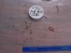 Cassiar Cannery - SERC - MB - JK - 2011/2012 - sample 27 (1) 2011