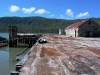 Cassiar Cannery - the docks after the clean up is complete
