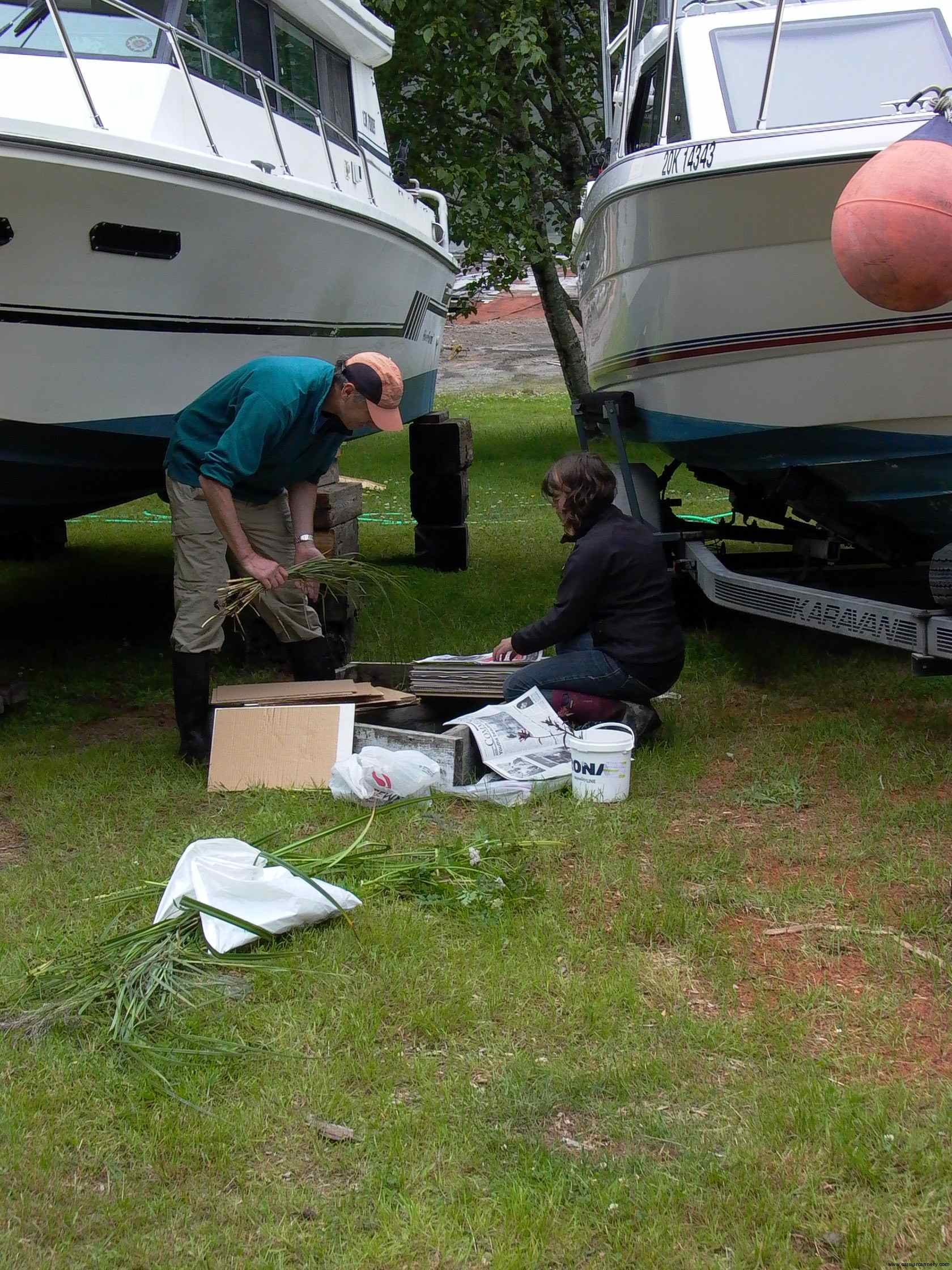 Cassiar Cannery - Darwyn Coxson and Cedar Welsh from UNBC starting to catalogue plant species prior to their student's arrival