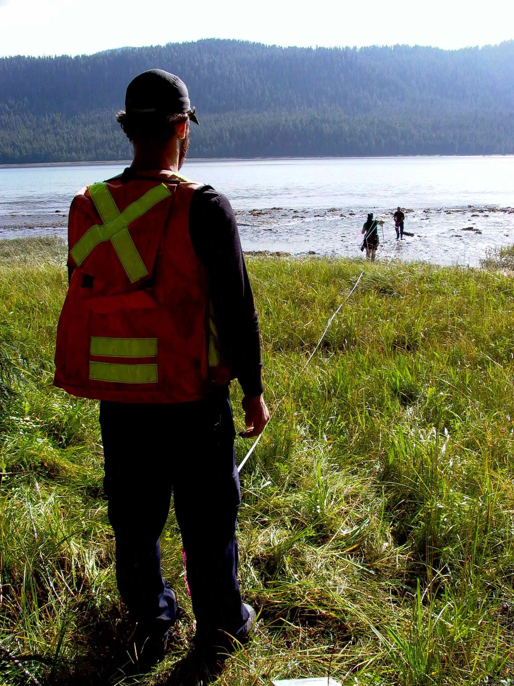 Cassiar Cannery - starting to set up the transsections from the tree line to the mud flats