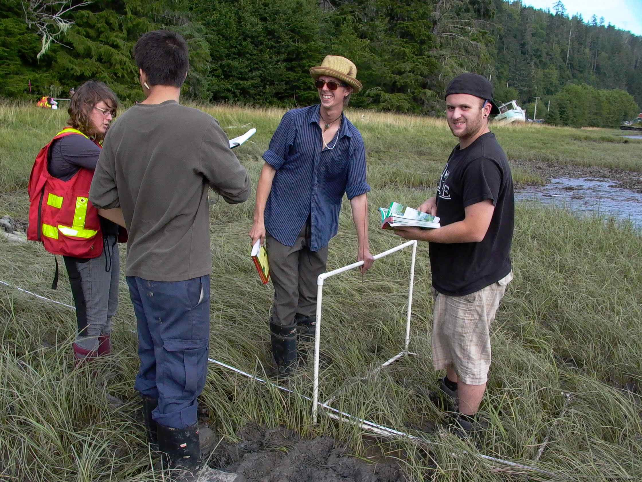 Cassiar Cannery - students worked their way down their transsection from the tree line to the mud flats