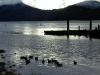 Cassiar Cannery - winter birds